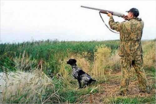 В полиции обратились к охотникам и рыбакам