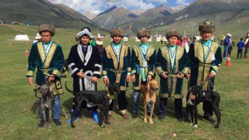 «Итбегілік» хотят признать официальным видом спорта в Казахстане