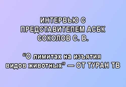 "Интервью АСБК ""о лимитах на изъятия видов животных"" – от ""Туран ТВ"""