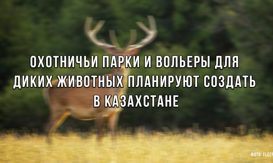 Охотничьи парки и вольеры для диких животных планируют создать в Казахстане