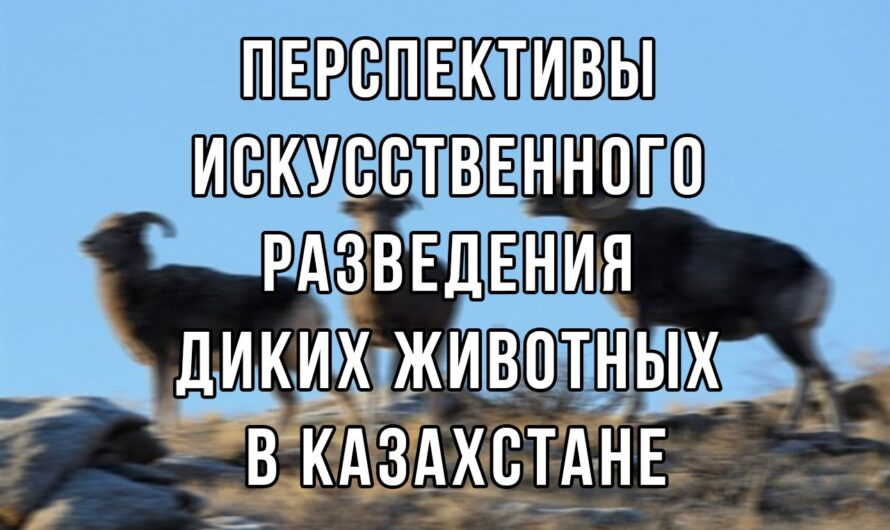 Перспективы искусственного разведения диких животных в Казахстане